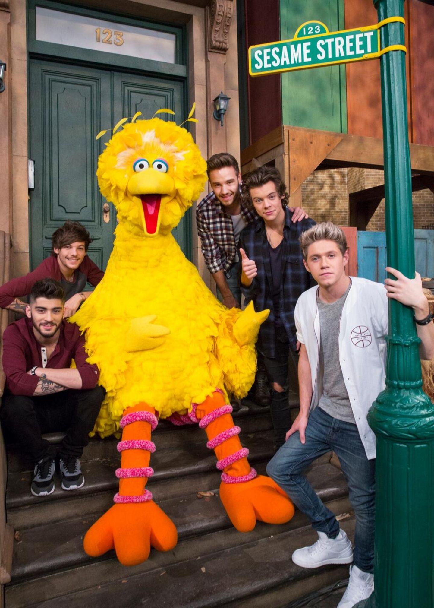 """Dezember 2013  Na, wer ist wohl größter Fan von """"One Direction""""? Genau, Bibo aus der Sesamstraße!"""