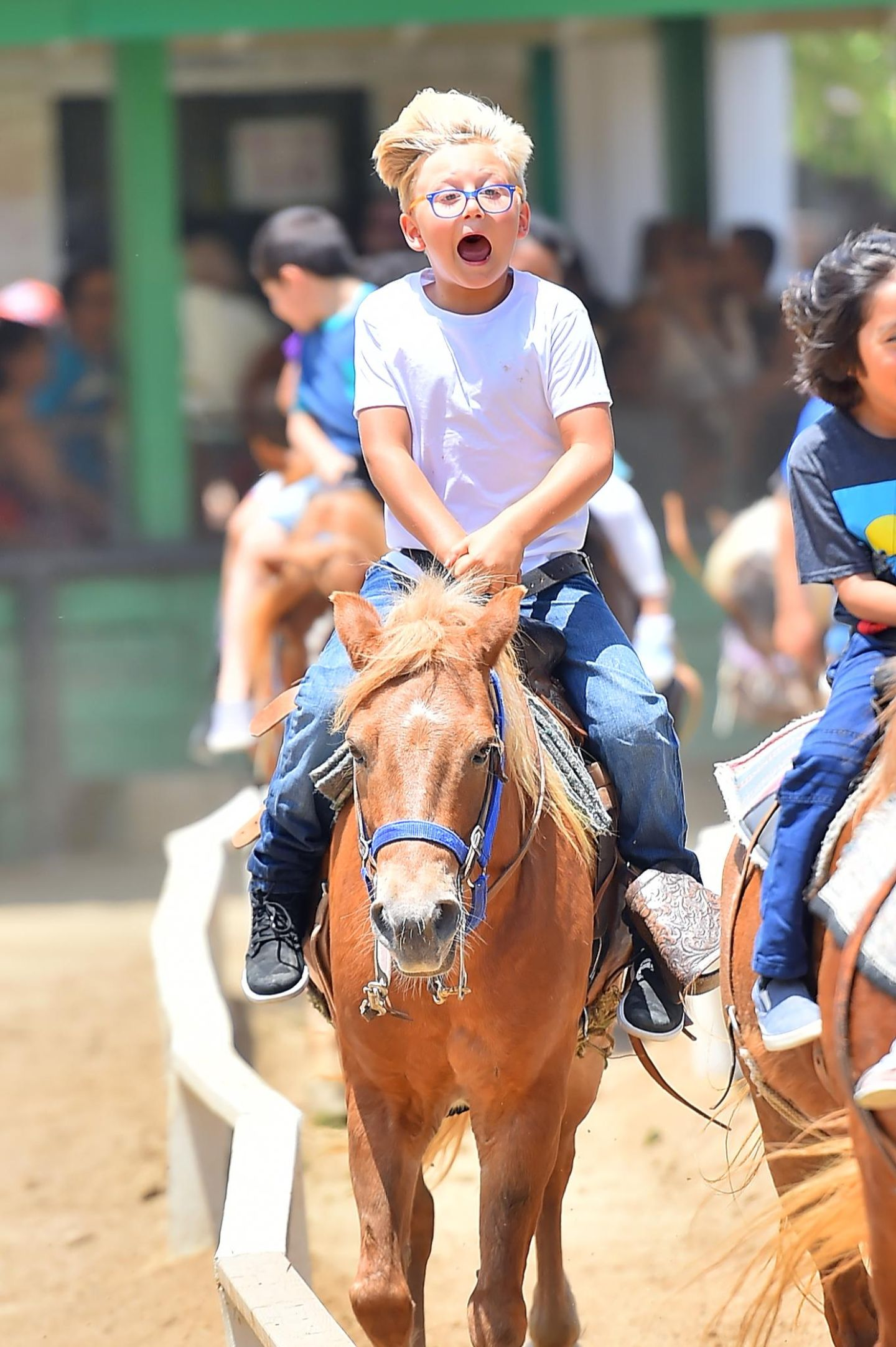 28. Juni 2015  Hoppla! Das geht das Pferd mit Zuma durch.