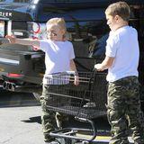 24. Februar 2013  Zuma und Kingston haben es auf dem Parkplatz eines Supermarktes auf einen Fotografen abgesehen.