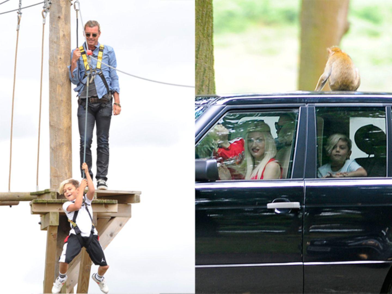 31. Juli 2013  Gwen Stefani und Gavin Rossdale besuchen mit ihren beiden Söhnen einen Safari Park. Da sitzt schon mal ein Affe auf dem Autodach oder Kingston schwingt sich wie Tarzan durch die Lüfte.