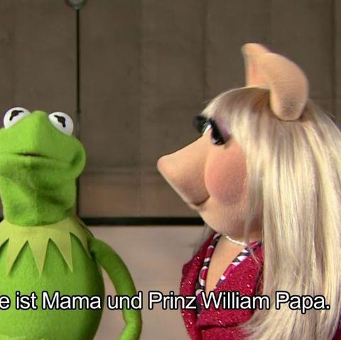Kermit und Miss Piggy