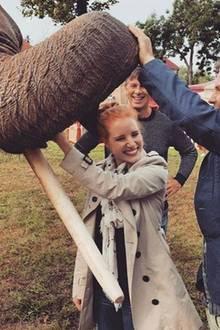 Jessica Chastain freut sich über ihre Co-Stars Daniel Brühl und Elefant Lily.