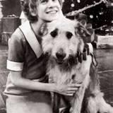 Im Alter von zwölf Jahren ergatterte Sarah Jessica Parker eine Nebenrolle in dem Broadwaymusical »Annie«.