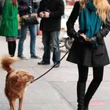 """14. Dezemeber 2011: In der Drehpause geht """"Gossip Girl"""" Blake Lively mit dem Hund von Ryan Reynolds am Set in Manhattan spaziere"""