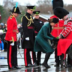 """Gleich danach darf die Herzogin ein Kleeblattsträußchen an den Hund der Garde weitergeben. Der irische Wolfshund heißt """"Domnhall"""" und würde sich über ein leckeres Stück Fleisch sicherlich mehr freuen als über das Grünzeug von der grünbemantelten Catherine."""