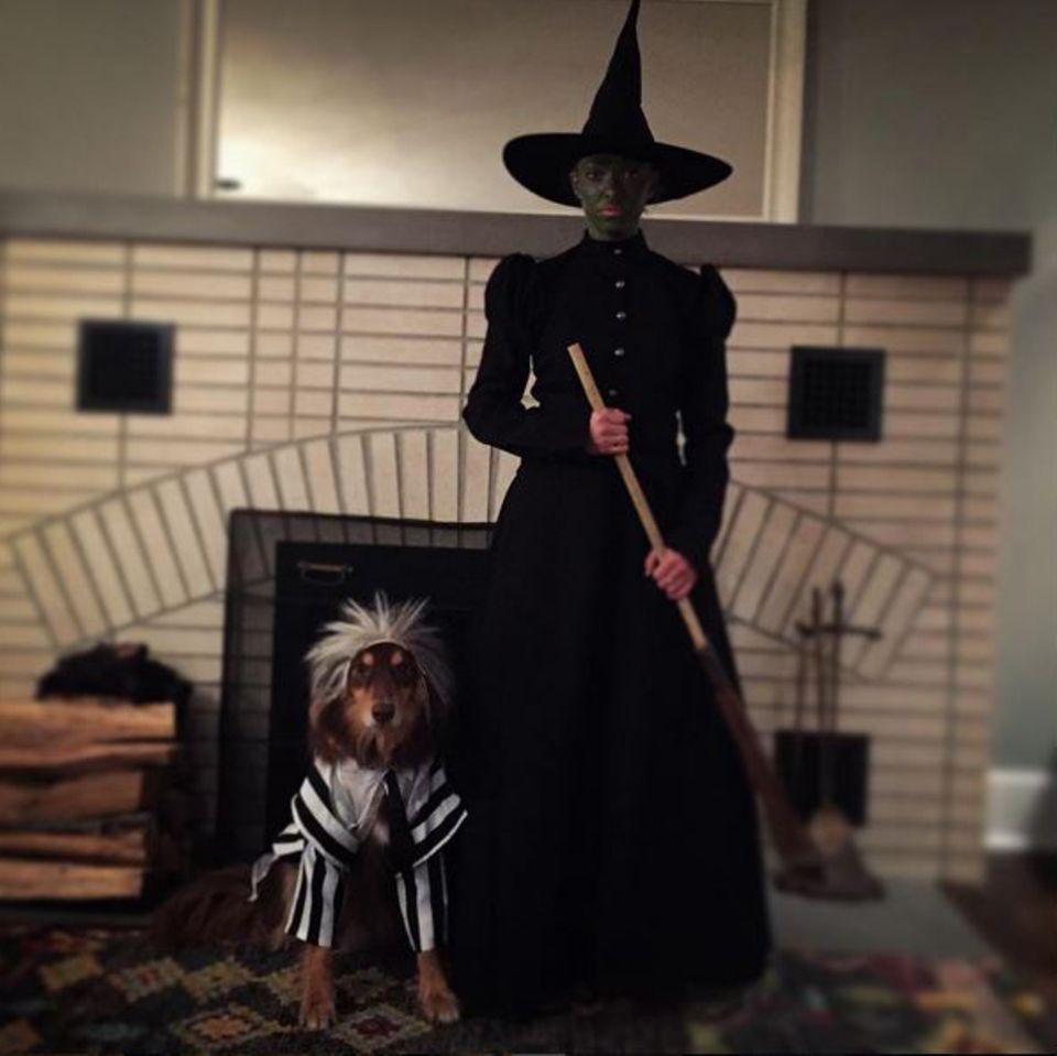 """Auch an Halloween unzertrennlich: Zusammen mit ihrem vierbeinigen Liebling Finn zelebriert Amanda Seyfried das Gruselfest als Hexe aus """"Wicked""""."""