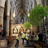 Hochzeit England Vorbereitungen: Unter der Anleitung des Floristen Shane Conolly werden die Ahornbäume in der historischen Kirch