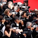 Filmfestival Cannes: Die Fotografenmeute versucht jedes tolle Motiv einzufangen.