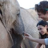 """30. September 2009: Beim Besuch des """"Samburu National Reserve"""" in Kenia gehen die beiden auf Tuchfühlung mit einem Elefanten."""
