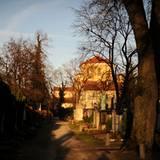 Heesters wird auf dem Münchner Nordfriedhof beigesetzt. Rund 200 Gäste sind zu der Trauerfeier geladen, die anschließende Beiset