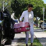 15. Oktober 2012: Auch Star-Katzen müssen mal zum Tierarzt und genau da bringt Kim Kardashian ihre Perserkatze Mercy in diesem p