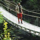 ... und macht sich dann auf den Weg aus dem Dschungel.