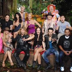 Im Baumhaus treffen sich alle Campbewohner wieder, feiern ihre neue Dschungelkönigin und lassen die gemeinsame Zeit Revue passie