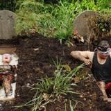 Am zehnten Tag müssen Kim und Rocco zur Dschungelprüfung antreten und sich in mit Spinnen, Schleim und Kakerlaken gefüllte Gräbe
