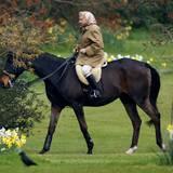 2. April 2002: Die Queen ist passionierte Reiterin und Pferdezüchterin. Im Schlosspark von Windsor wird sie bis heute immer wieder bei Ausritten gesehen.