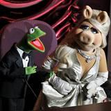 """Kermit und Miss Piggy kündigen die Performance des """"Cirque Du Soleil"""" an."""