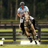 """Harry ist ein hervorragender Polospieler. Das stellt der Prinz beim """"Sentebale Royal Salute Polo Cup"""" in Wellington im US-Bundestaat Florida unter Beweis."""