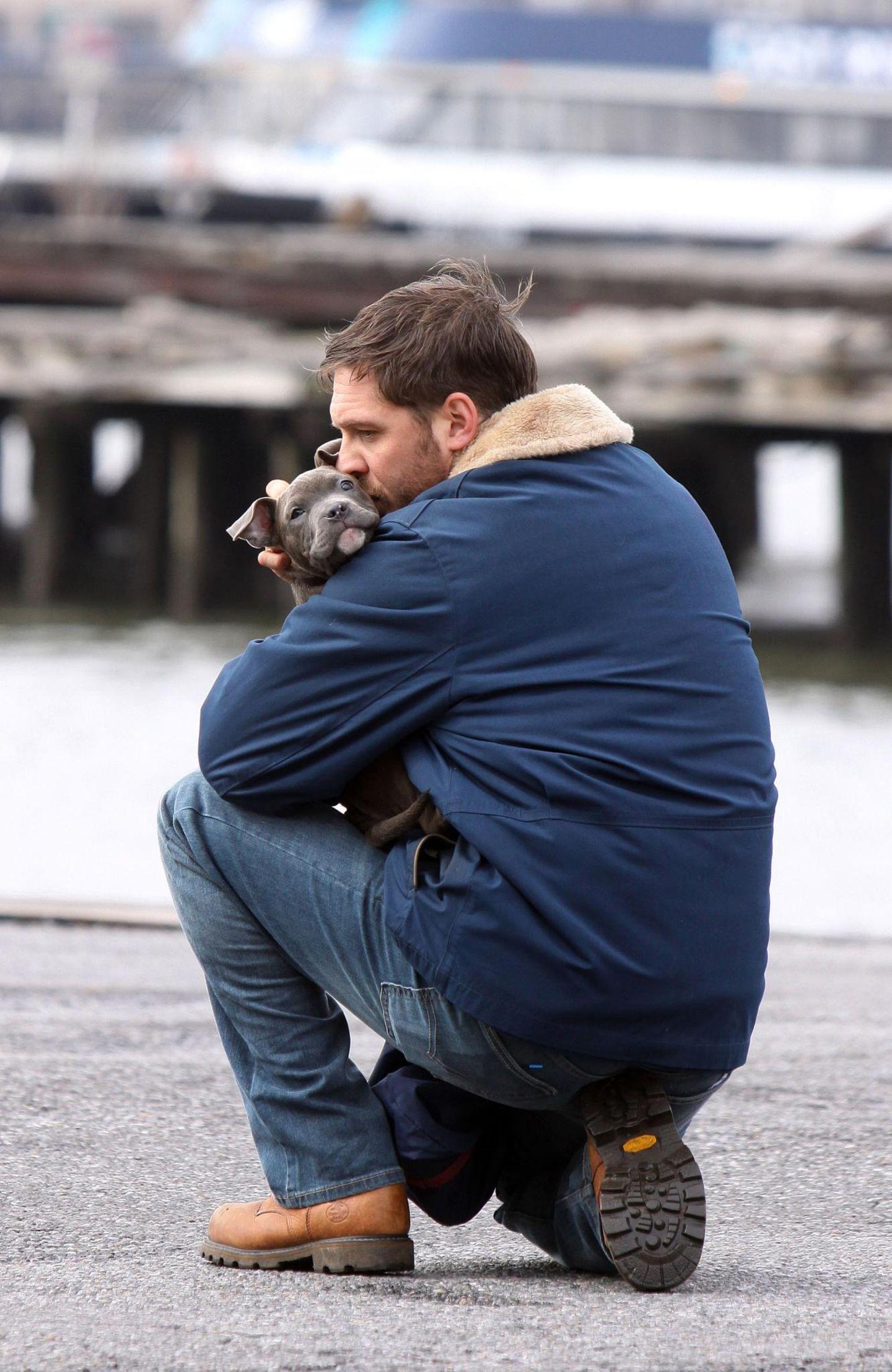 """11. März 2013: Tom Hardy dreht gerade den Film """"Animal Rescue"""" in Brooklyn. In dieser Szene scheint er genau das zu tun, was der Titel verspricht: Er rettet einen Pitbull."""