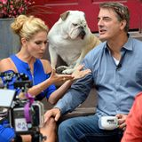 "16. Oktober 2013: Chris Noth mach es sich bei Cat Greenleafs' ""Talk Stoop"" in Brooklyn bequem."