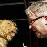 """26. Oktober 2013: Prinz Laurent von Belgien kürt den schönsten Hund, den """"Het Mooiste Zinneke"""" in Brüssel."""