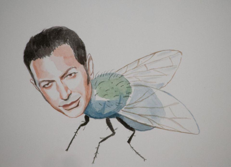 Jeff Goldblum als Fliege