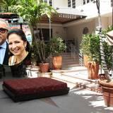 """Berühmte Hotelbesitzer: Sängerin Gloria Estefan und ihr Ehemann Emilio besitzen das Art-Deko-Hotel """"Cardozo"""" in Miami South Beach. Eine Übernachtung in den Zimmern mit Blick auf den Ocean Drive gibt's ab 133 Euro."""