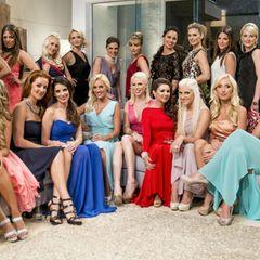 """Diese 22 Frauen wollen das Herz des """"Bachelors"""" erobern. Die neue Staffel der beliebten TV-Show ist ab dem 22. Januar 2014 auf """"RTL"""" zu sehen."""