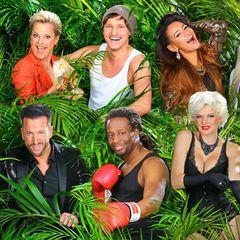 """Endlich ist es wieder so weit: das sind sie, die Teilnehmer des diesjährigen Dschungelcamps! Elf Kandidaten kämpfen ab dem 17. Januar 2014 in verschiedenen Dschungelprüfungen um die Krone des Dschulgelkönigs.    Alle Infos zu """"Ich bin ein Star - Holt mich hier raus!"""" im Special bei RTL.de: http://www.rtl.de/cms/sendungen/ich-bin-ein-star.html"""