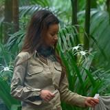 """Tag 2  Gabby überbringt die Zigarettenration des Tages für die Dschungelcamper.  Alle Infos zu """"Ich bin ein Star - Holt mich hier raus!"""" im Special bei RTL.de: http://www.rtl.de/cms/sendungen/ich-bin-ein-star.html"""