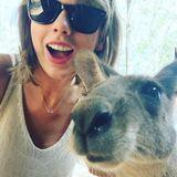 Auch Taylor Swift ist überrascht welche Rampensau-Qualitäten das Känguru hat.