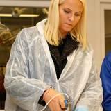 9. September 2014: Kronprinzessin Mette-Marit impft während ihrer Rundreise durch Nordland einen jungen Fisch in einer Aufzuchtstation.