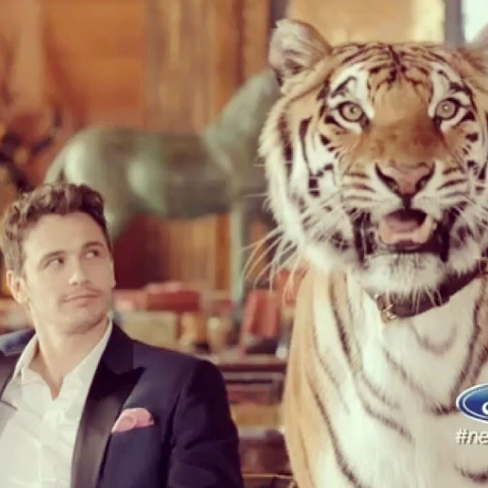 Schauspieler James Franco hat keine Angst vor großen Katzen - für einen aktuellen Werbespot drehte er sogar mit einem Tiger.