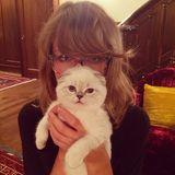 """Lena Dunham begrüßt Taylor Swifts Kätzchen """"Olivia Benson""""."""