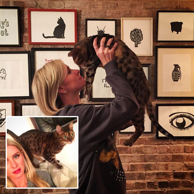 Nicky Hilton und Katerchen Mac verbringen gerne Zeit miteinander.