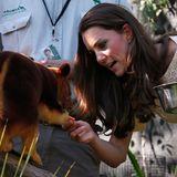 Ein Baumkänguru bekommt von Herzogin Catherine einen kleinen Snack.