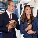 """Prinz William und Ehefrau Catherine besuchen das """"Royal New Zealand Police College"""" in Wellington, wo Polizeihunde trainiert werden. Den vierbeinigen Nachwuchs bekommen sie dabei natürlich auch gezeigt."""
