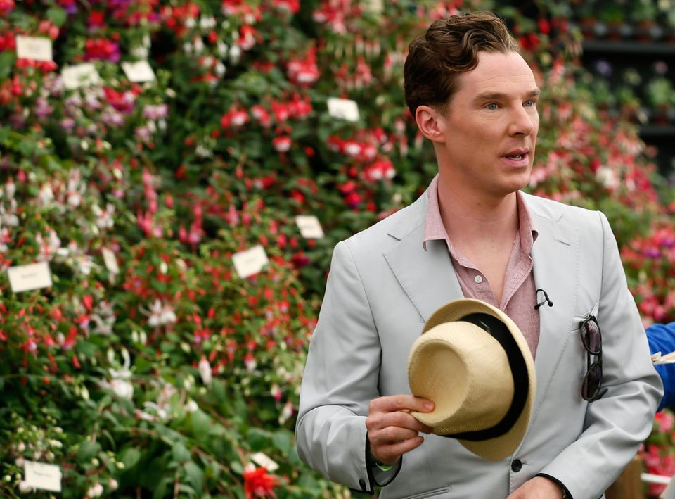Auch Benedict Cumberbatch sieht sich die farbenprächtigen Blumen an.