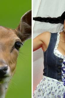 """Bambi  Nina """"Bambi"""" Bruckner ist 2009 für einige Monate die Frau an der Seite des Bauunternehmers."""