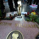 11. August 2014: Fans trauern auf dem Walk Of Fame in Hollywood um den Schauspieler. Robin Williams wurde am Mittag tot in seinem Haus bei San Francisco aufgefunden. Die Polizei geht von Suizid aus. Ein Sprecher bestätigt, dass der 63-Jährige seit geraumer Zeit unter Depressionen gelitten hatte.