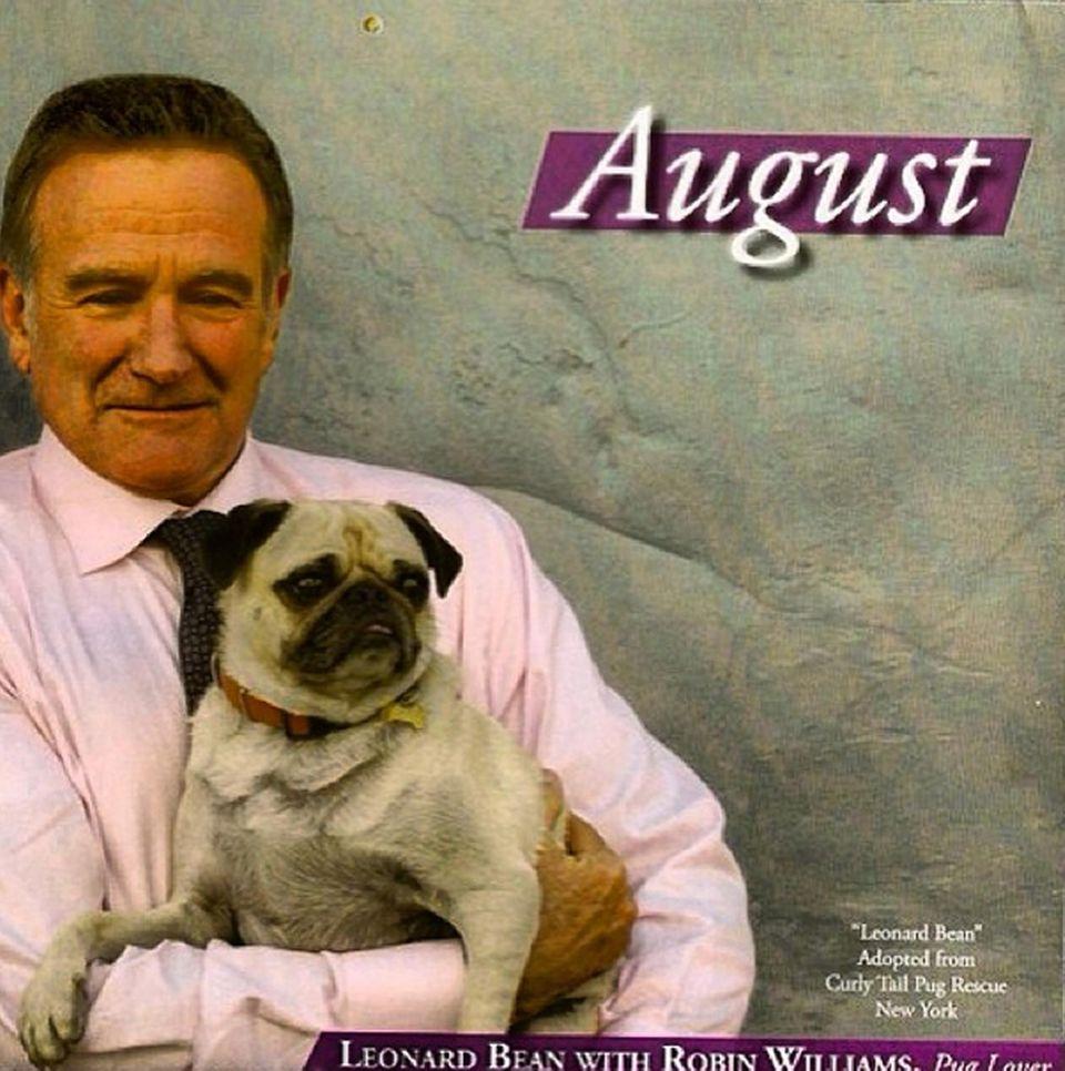 """Mit Leonard posiert Robin Williams für einen Kalender der Tierrettungs-Organisation """"Tony La Russa's Animal Rescue Foundation""""."""