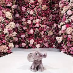 Nach der Show von Oscar de la Renta schickt Karlie Kloss ihren Instagram-Fans dann noch ganz besonders flauschige Grüße vom Laufsteg.