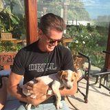 """Pierce Brosnan begrüßt ein neues Familienmitglied """"Sage""""."""