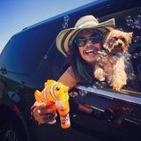 """Auf Twitter teilt Steven Tyler ein Foto von sich mit Hund, Zigarre und Seifenblasenpistole und schreibt dazu: """"Es ist der erste Tag vom Rest deines Lebens, vergiss nicht heute Spaß zu haben."""""""