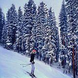 Ski-Fahren gehört in Aspen einfach dazu.