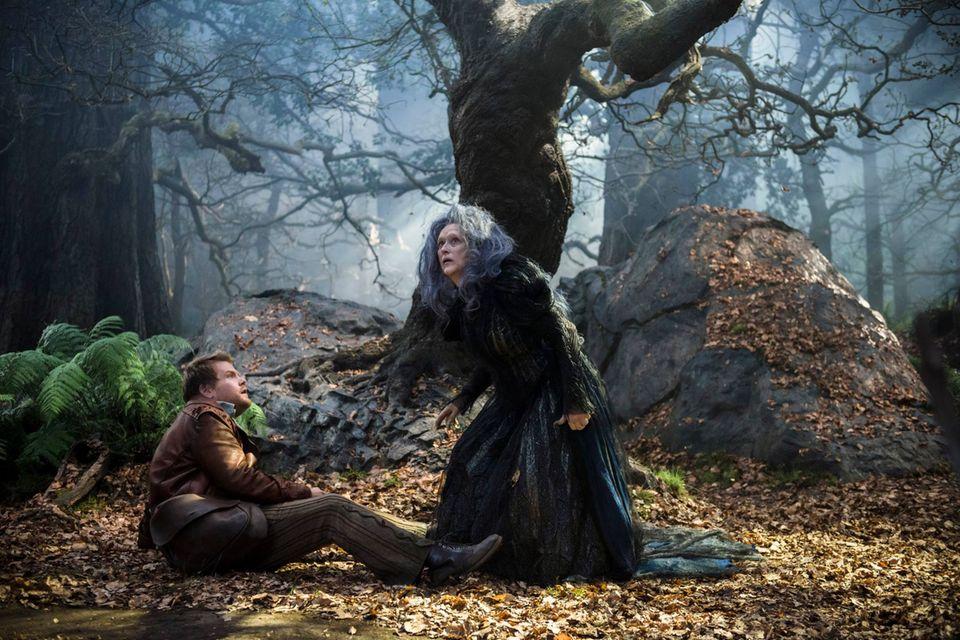 """Fantasy - """"Into the Woods""""  Auch hier stellt Kostümbildnerin Colleen Atwood ihren Ideenreichtum unter Beweis: Für Rob Marshalls Film griff sie tief in die Märchenkiste, ohne dabei in Klischees zu verfallen. Der böse Wolf (Johnny Depp) wirkt im grau melierten Anzug wie ein Dandy, und Cinderella (Anna Kendrick) versprüht in einer goldenen Seidenlamé-Robe viel Hollywood-Glamour. Atwoods Geniestreich ist jedoch die böse Hexe (Meryl Streep). In einer imposanten düsteren Robe aus Seidenchiffon wirbelt sie durch die Fantasy-Welt."""