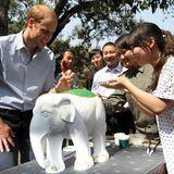 China Tag 4: Was Herzogin Catherine kann, kann ihr Mann schon lange. Prinz William greift zum Pinsel und bemalt eine Elefantenskulptur.