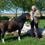 """Der hessische Cowboy Gregor, 66, betreibt einen Ackerbau- und Pferdepensionsbetrieb.    Alle Infos zu """"Bauer sucht Frau'"""" im Special bei RTL.de: www.rtl.de/cms/sendungen/bauer-sucht-frau.html"""