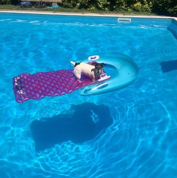 Heiß: Audrey Versace gönnt sich eine Erfrischung im Pool.