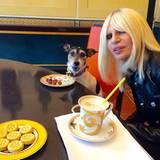 Was für ein Hundeleben! Audreys Frauchen, Modedesignerin Donatella Versace, verwöhnt ihren Liebling nach Strich und Faden. Da gibt's sogar das Trockenfutter vom edlen Porzellanteller.