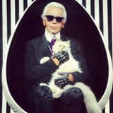 Schuld an der Luxussucht des kleinen Kätzenchs ist Kult-Designer Karl Lagerfeld. Der Chef im Hause Chanel genießt es, seine kleine Mademoiselle zu verwöhnen und inszeniert sie nur zu gern für die Kamera.